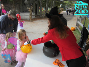 Zoo Boo Treat Station