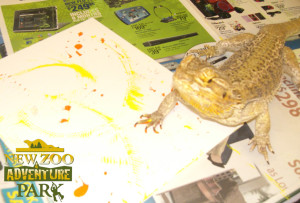 Bearded Dragon Painting