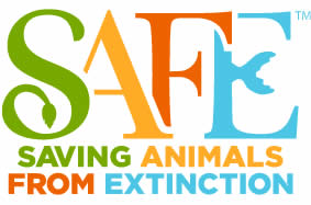 Image result for SAFE: Saving Animals From Extinction